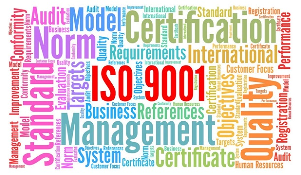Courses to take to become an ISO expert